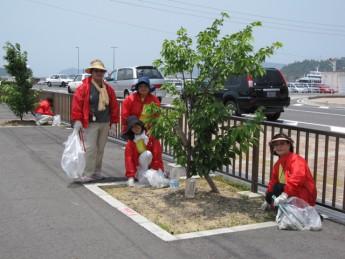 「宇野港の桜公園・桜の並木道」の清掃