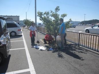 宇野港の桜公園桜の並木道の清掃(おかやまアダプト事業)を実施