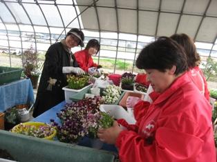 瀬戸内国際芸術祭2013インフォメーションセンターへプランター花壇を寄贈