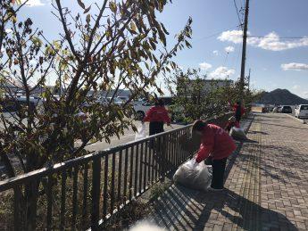 桜の公園桜の並木道の清掃